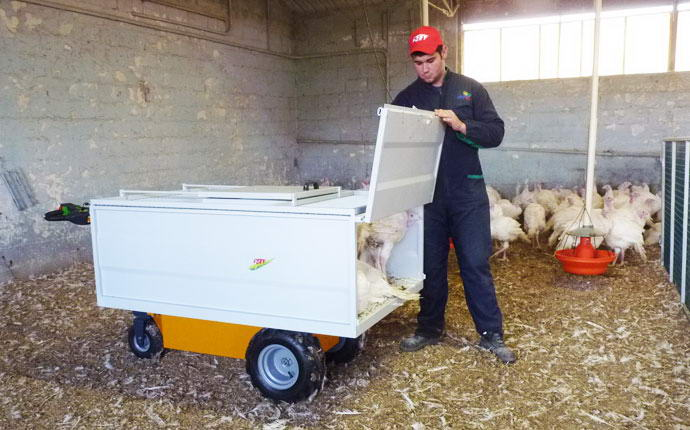 Electric transporter 600 WXL Fort, equipped with cash poultry.