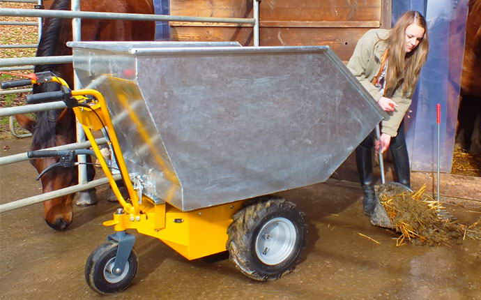 Transporter electric dump with rounded corners, girl who takes care of your horse.